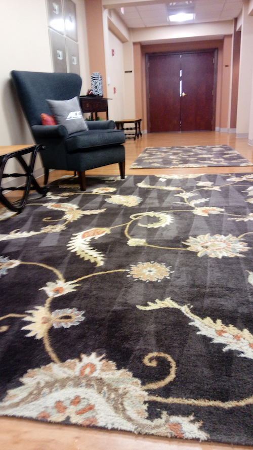 professional rug cleaning in nursing facility in Greensboro