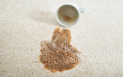 How Carbonation Cleans Carpets Better than Steam Cleaners